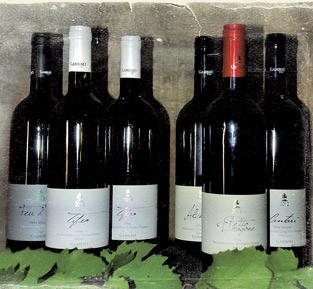 Geschenk 6 Das große Weinpaket